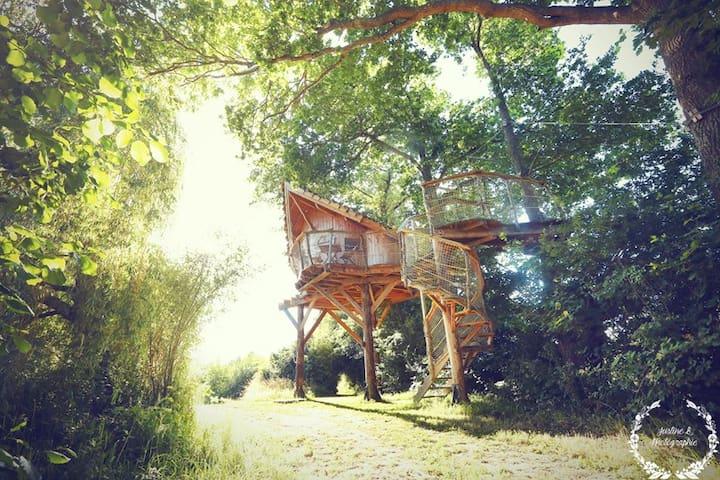 La Chouette Cabane - Oural - Pommerieux - Boomhut