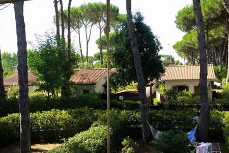 Casa vacanza Terracina - Terracina