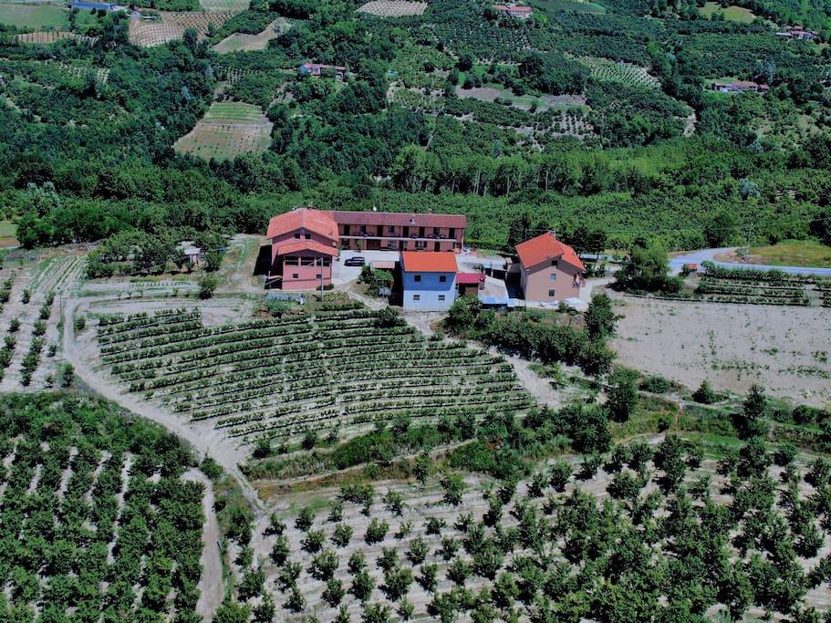 vista aerea su posizione appartamento con la campagna circostante di proprietà noccioleti e vigneti