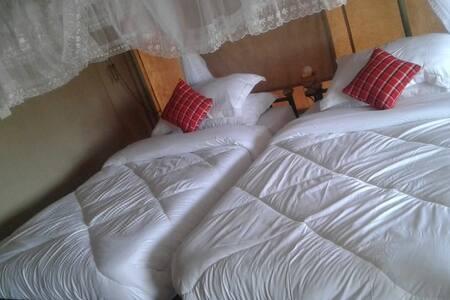 zebra kemeng'ore  Triple beds Tent