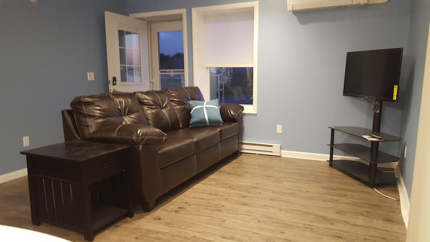 Living room seating with a queen pull out couch.