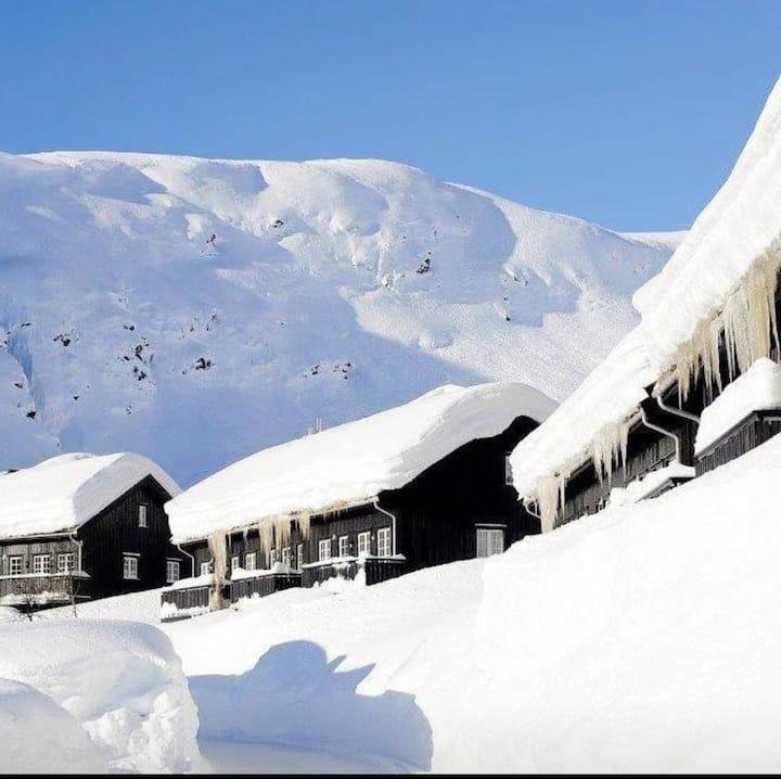 Koselig leilighet på Røldalsterrassen, ski in/out