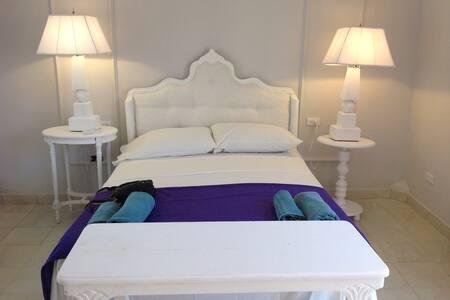 Suite roof room - Bed & Breakfast