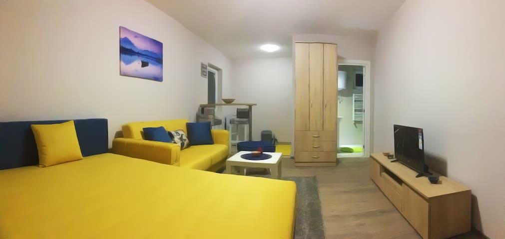Yellow Apartment near airport - Irina apartments