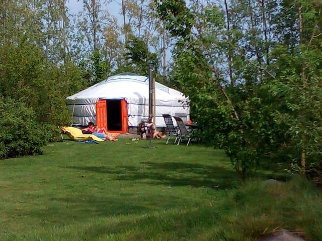 Luxe kamperen in geweldige yurt met privésanitair