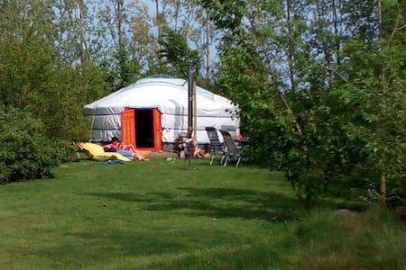 Luxe kamperen in geweldige yurt met privésanitair - Nieuwerkerk