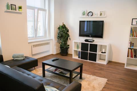 Cozy Aircon. Apartment in Slany-15 min to Airport