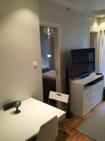 Nice and very central apartment