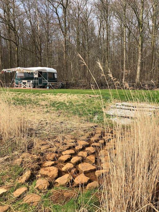 De stapstenen doorgang naar de bosrand waar voornamelijk tenten staan. En Charlie Green heeft z'n plekje verovert!
