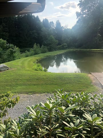 Pond #1. Taken from front porch