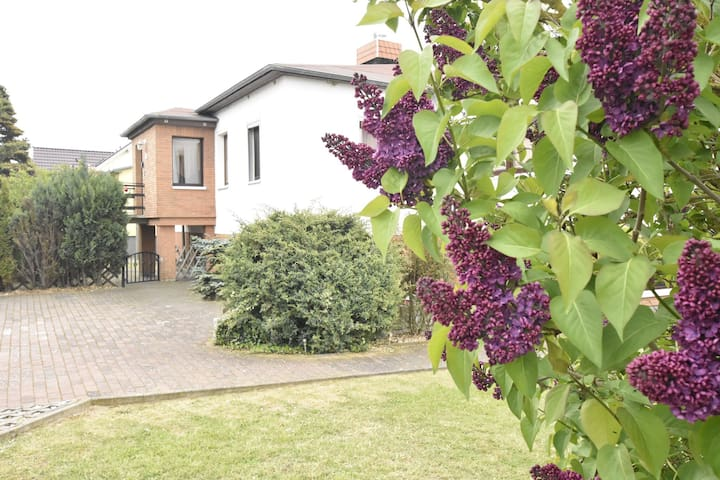 Spacious apartment with conservatory / garden / beach / dog beach