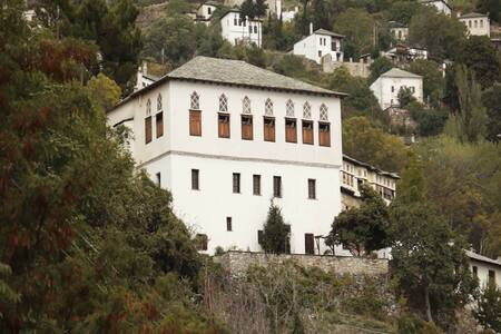 Mulberry Traditional Mansion offers the unique... - Makrinitsa - Daire