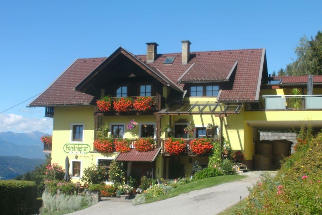 Unser Bauernhof Forstnighof auf 890 m Seehöhe...