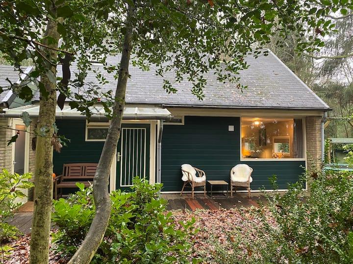 Nieuw op Airbnb: Knus boshuis middenin het groen