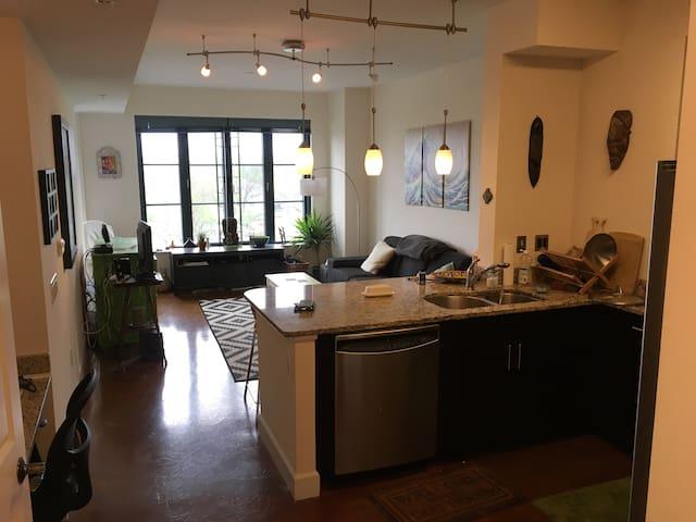 Bright fantastically located apartment above Metro - Washington - Apartment