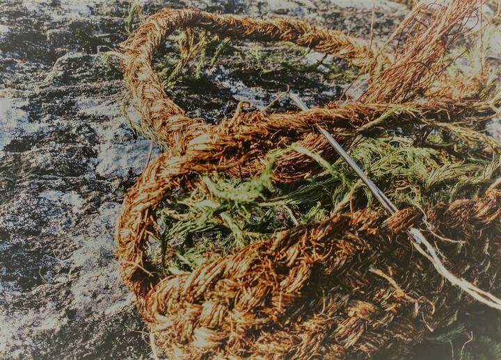 sewing a moss basket