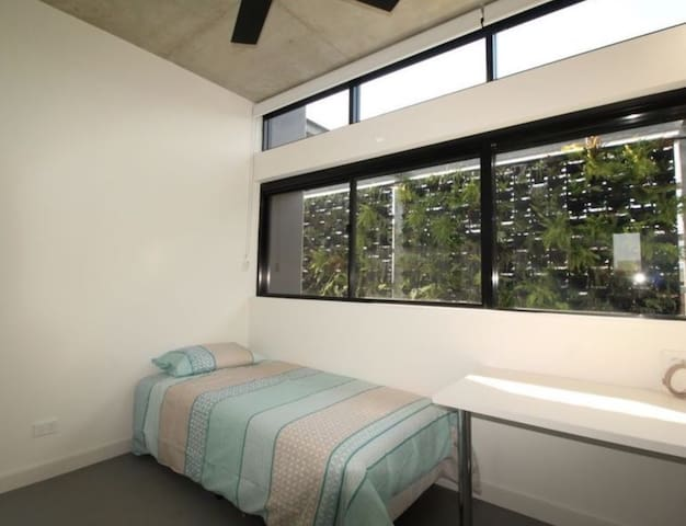 Studio on Randwick's main st; near UNSW and Coogee