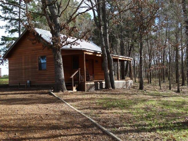 Bugscuffle Inn Cabin 5