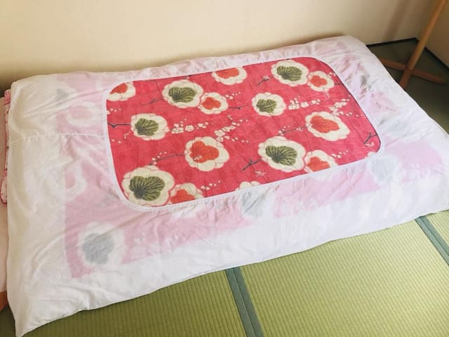 Good access to Kansai Airport ♪ 10 minutes on foot from the station! Quiet oceanic inn.【NO.3】