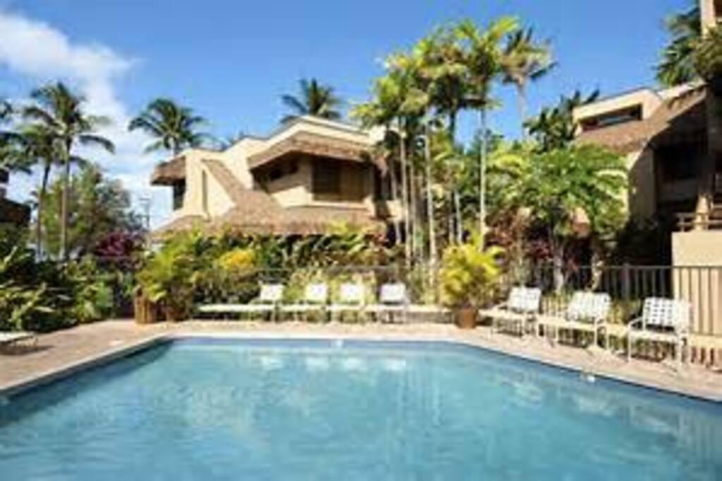 Quiet Private pool & lounge area