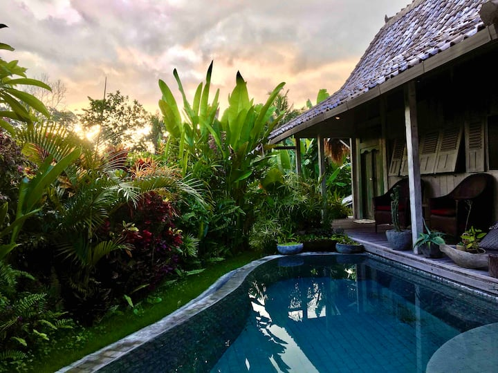 ECO TROPICAL WOODEN HOUSE