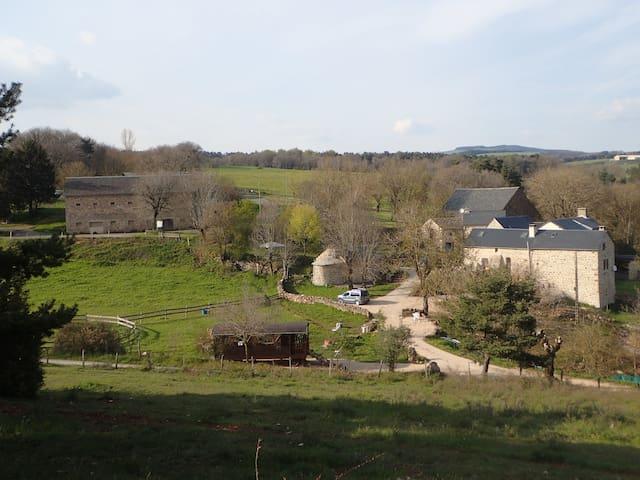 """Roulotte""""Git'âne"""" Mas de la Bohême à Saint-Léons - Saint-Léons"""