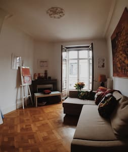 Beautiful large apartment steps from the lake - Genève