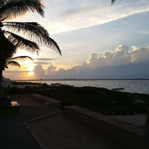 Beautiful beach front apartment (ORCA) - Progreso - Lägenhet
