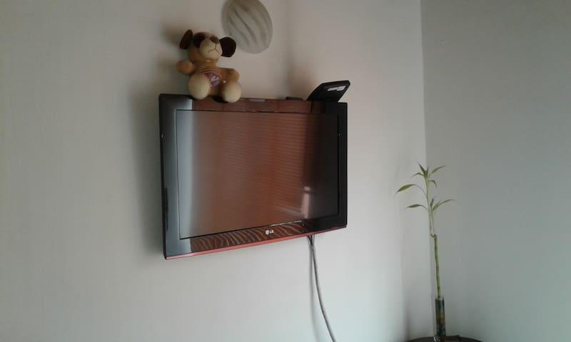 TV PRINCIPAL