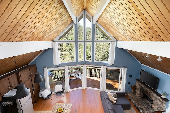 Treetop Modern Mountain Loft Above It All