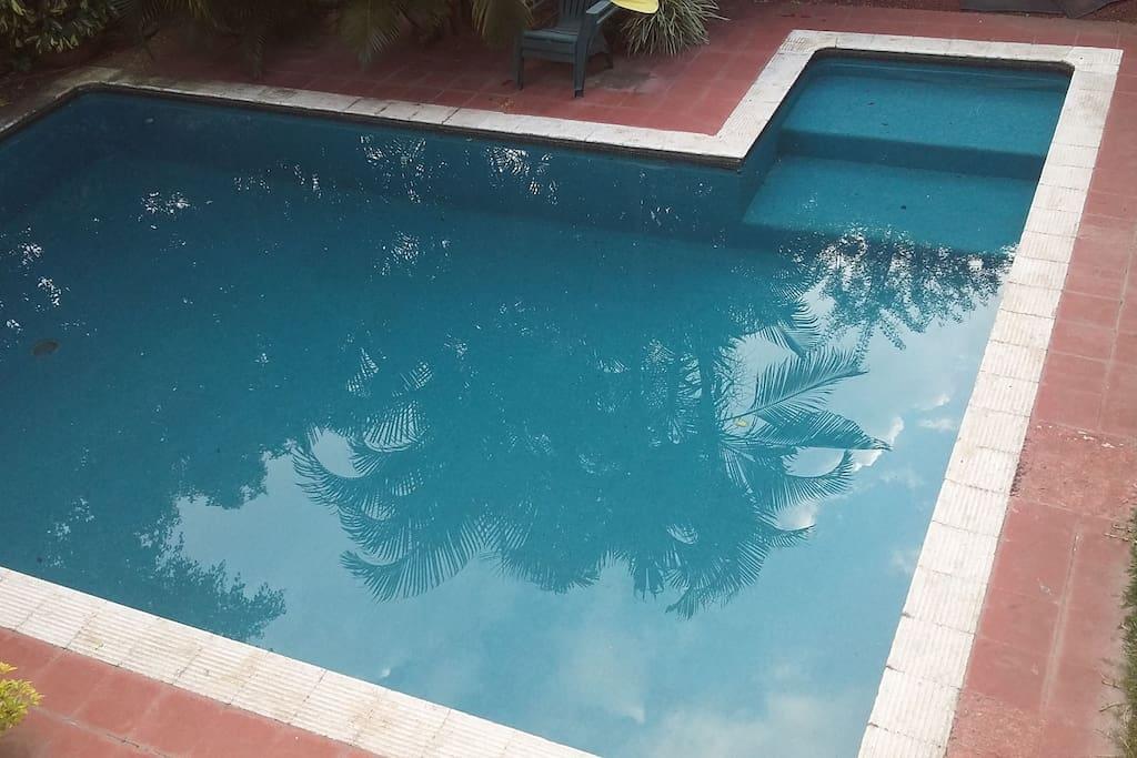 Alberca de buen tamaño y no mucha profundidad. Agua limpia y templada.