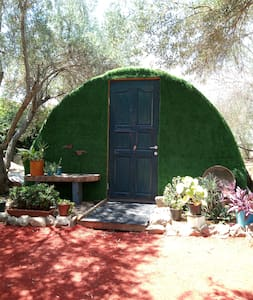 in our yard ~ Great location~Think upscale camping