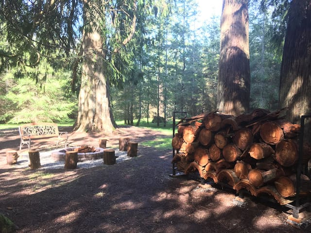 Camping on 14 Acres of Private Old Growth Woods - Olympia - Tält