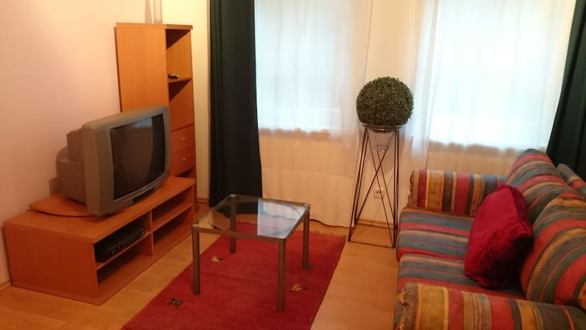 Charmante Gästewohnung - Bad Dürkheim - Appartement