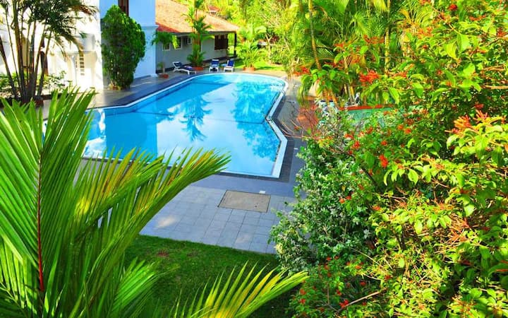 Luxury rooms for four - Bougain Villa