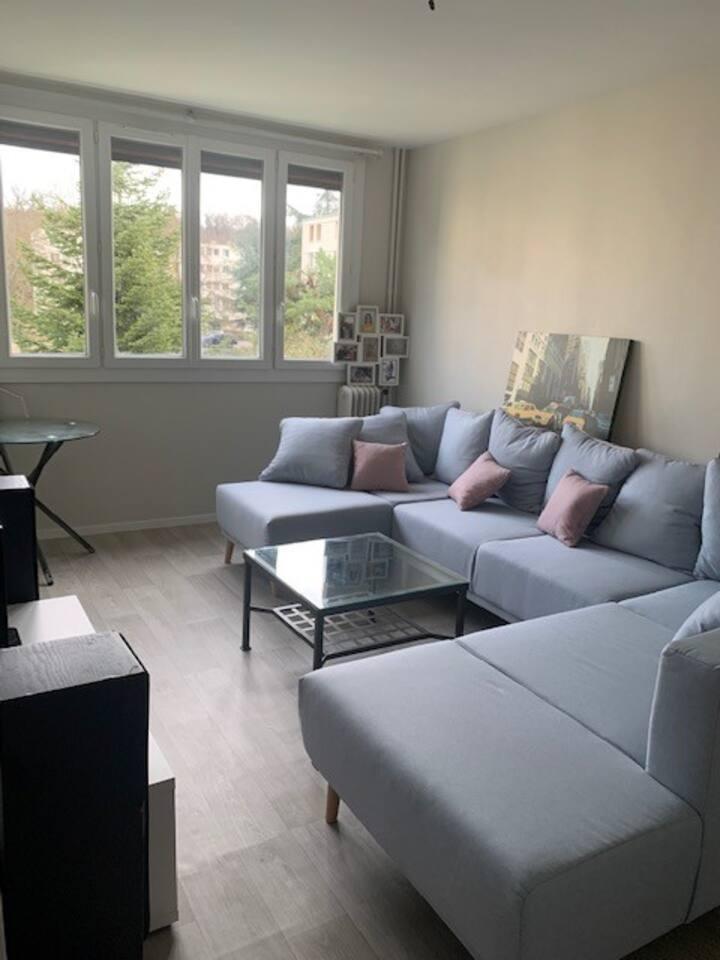 Appartement Fontainebleau/Avon à 10mn du Château