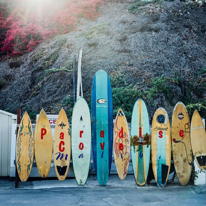 Paradise Cove의 Paradise Cove Beach Cafe 사진