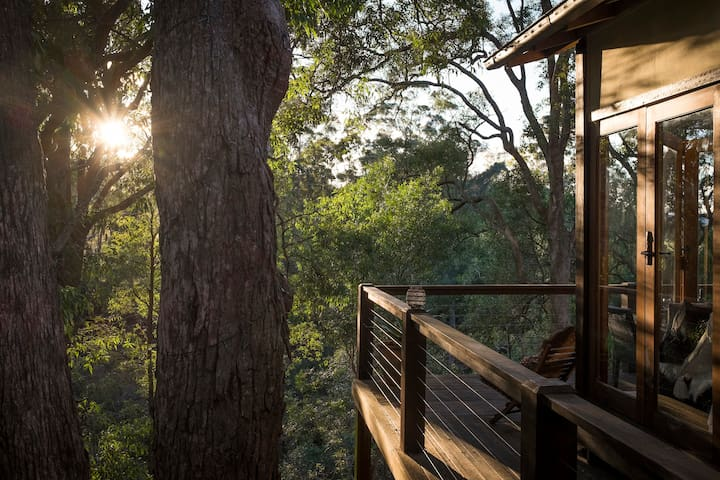THE TREEHOUSE OVERLOOKING KANGAROO RIVER - Kangaroo Valley - Huis