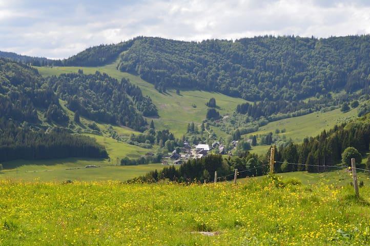 Bernau imSchwarzwald  Haus mit Aussicht
