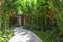 Beautiful Tropical Gardens in an enclosed area.