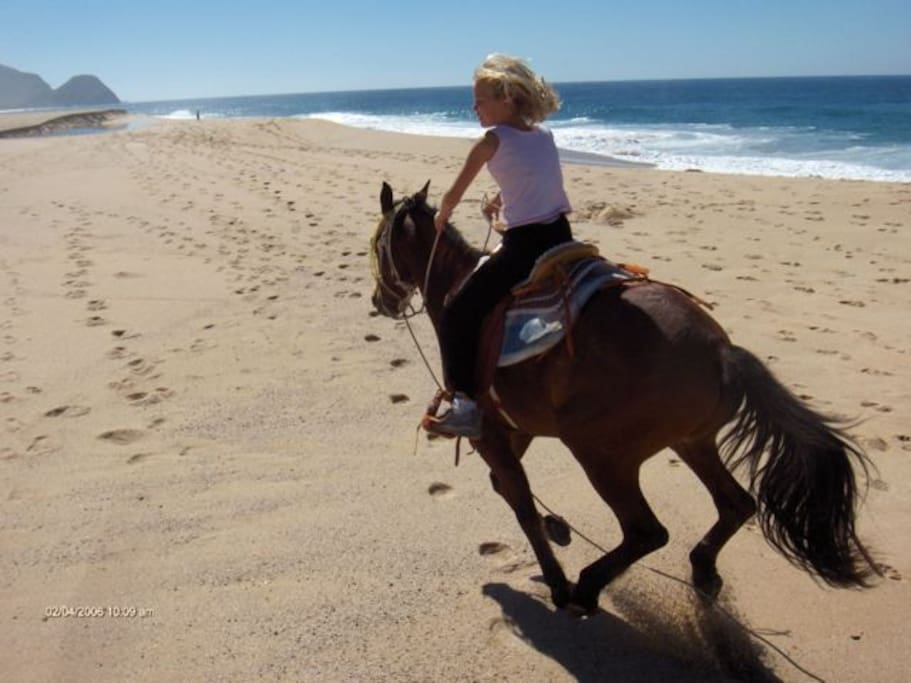 Keira flies free on our beach, so beautiful and wild and open.  Incredible