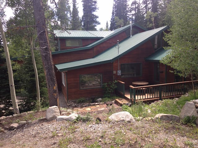 Cozy cabin in Alma CO 16 miles from Breckenridge!