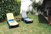 Back yard| garden