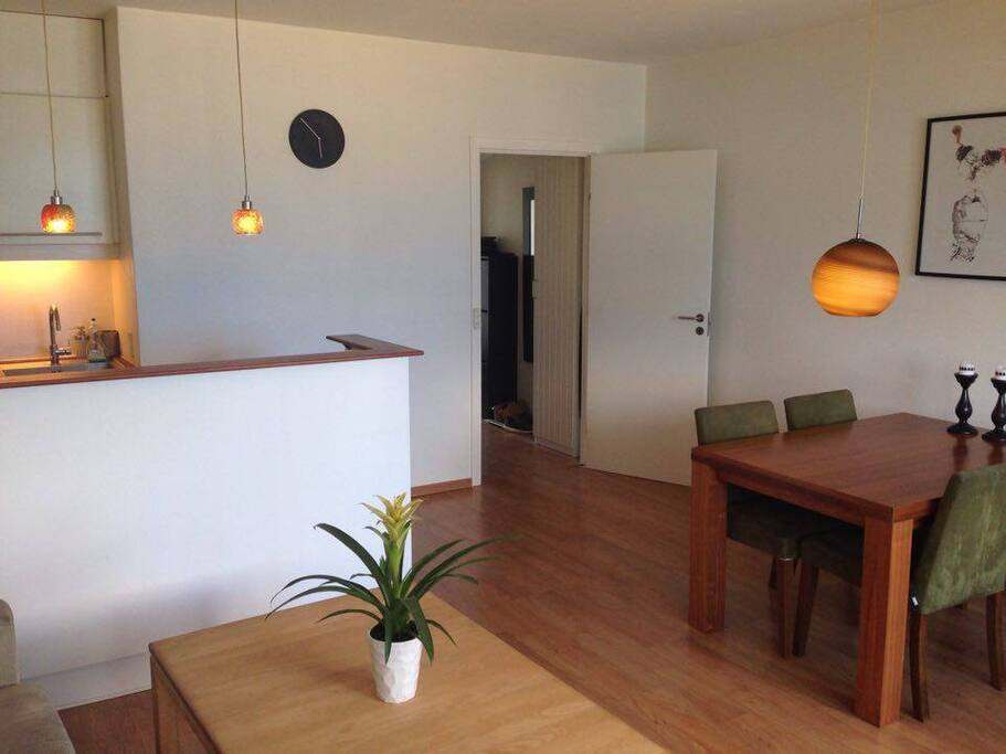 Livingroom and entrance