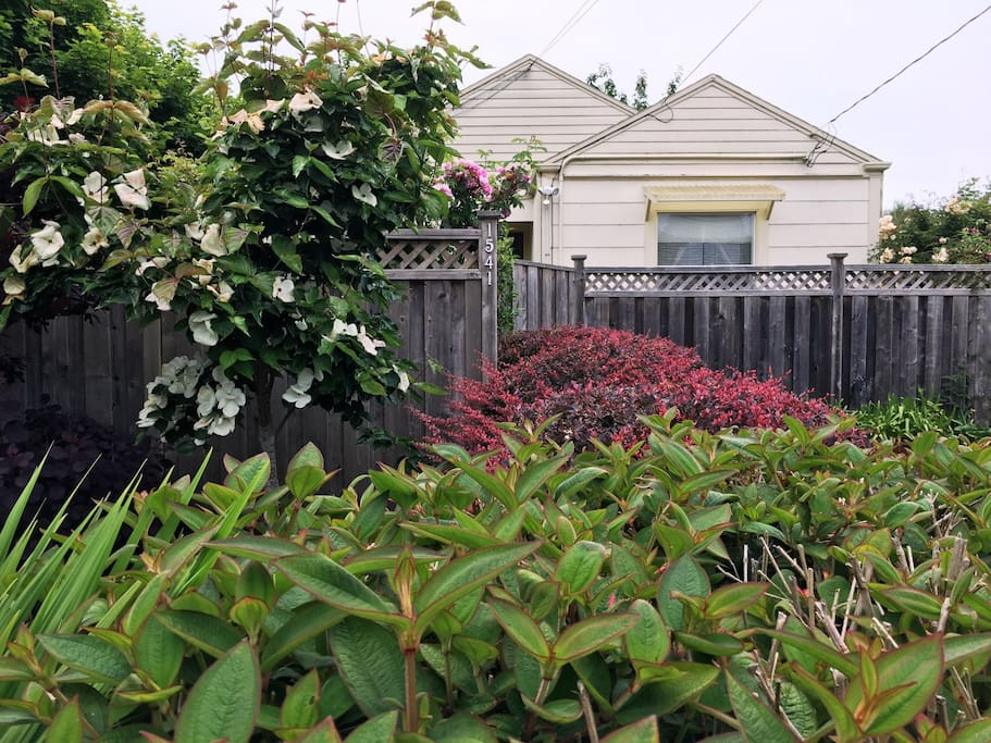 Arcata Stay's Sweet Home Stay 2 BD/1 BA Bungalow exterior