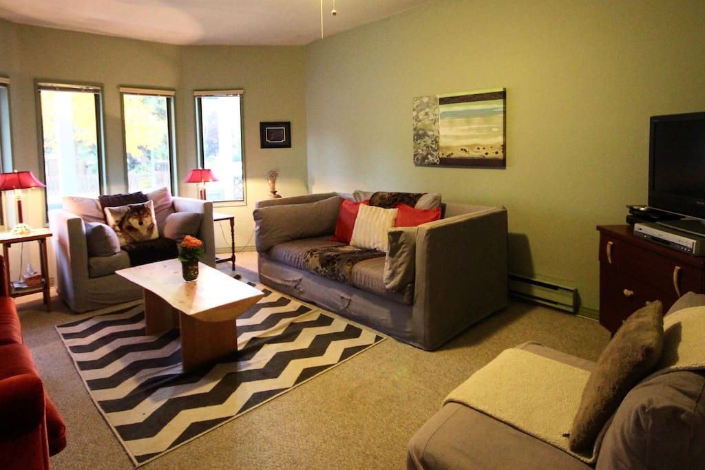 Perfect family room to settle in and watch Netflix on a flat screen tv.