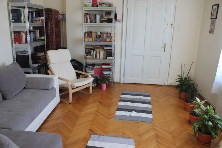 Quiet and cozy house in historical old town - Cluj-Napoca - บ้าน