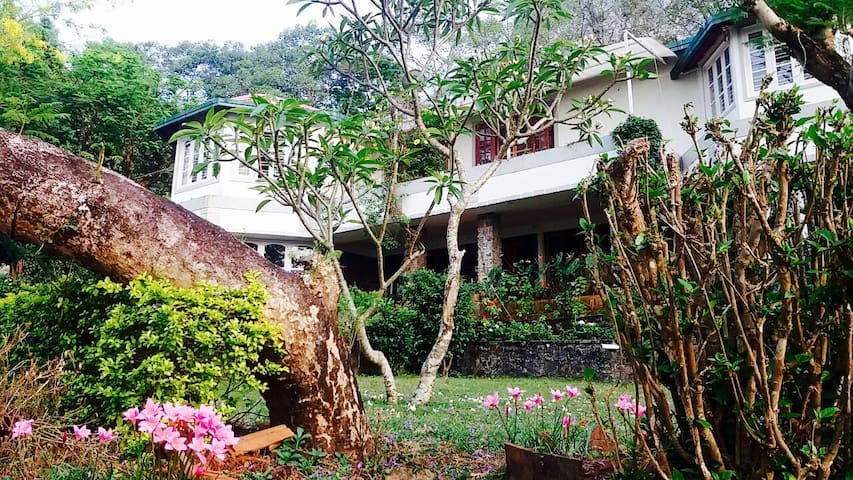 Froghill Bungalow Luxury Homestay - Tamil Nadu - Bungalow