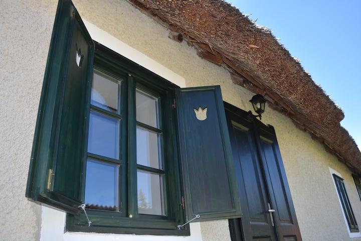 Green Tulip Guesthouse - Balatonszőlős
