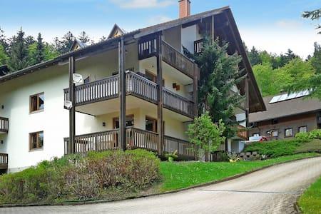 Appartement- Anlage Mättle - Todtmoos - Apartment
